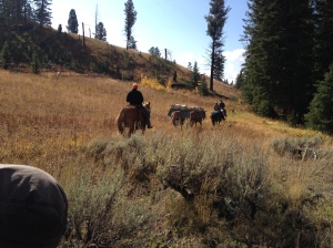 Elk Hunting Guides in Yellowstone National Park