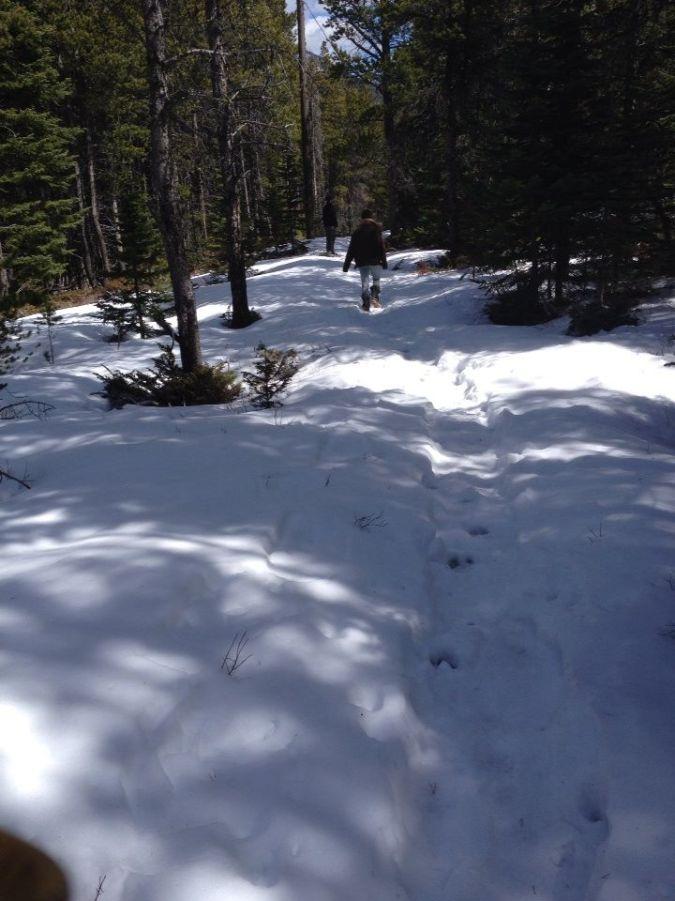Path to Mystic Lake