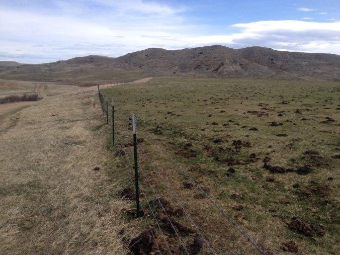 Rangelands Photo