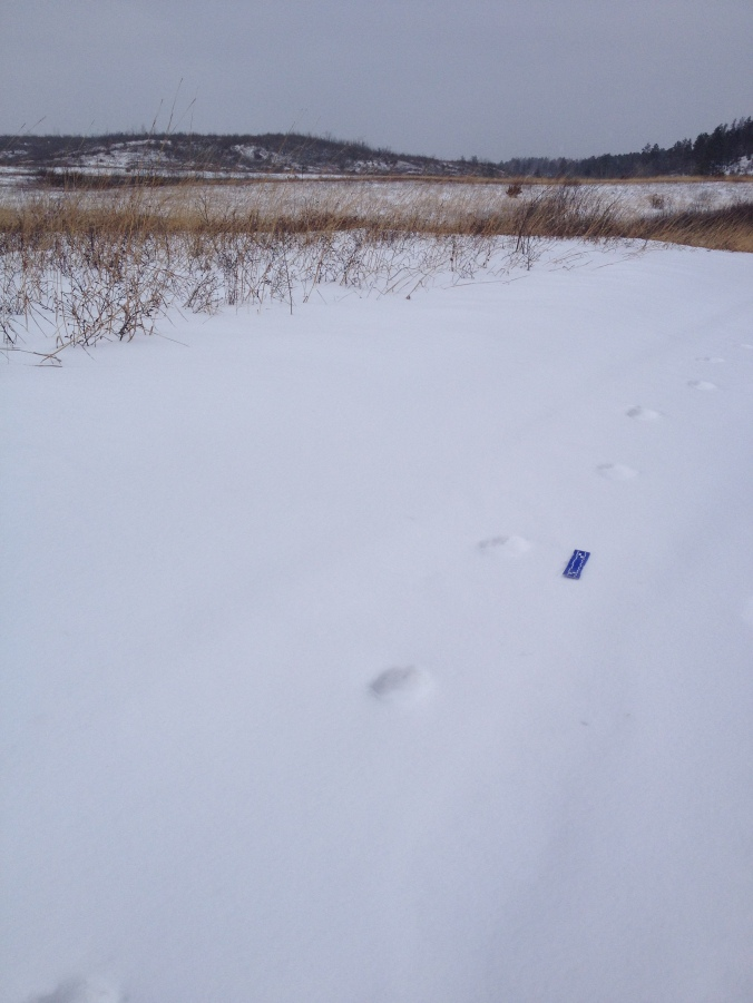 old-tracks