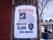 Reward poster in Crandon, WI