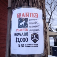 Reward poster in Crandon, WI