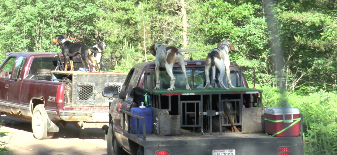 HOUNDS ON TRUCKS