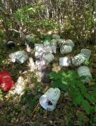 5-gallon buckets used in bear baits.