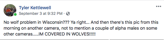 09/03/18 Post about wolves at bear baits.