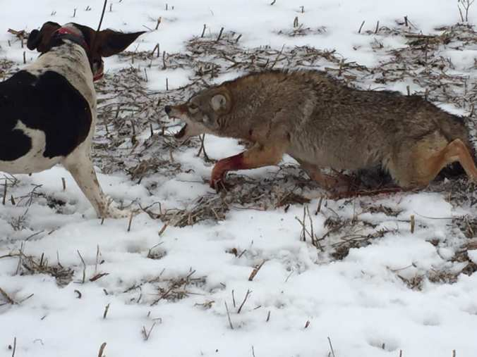 01.12.20 TRENT LIVINGSTON YOTE